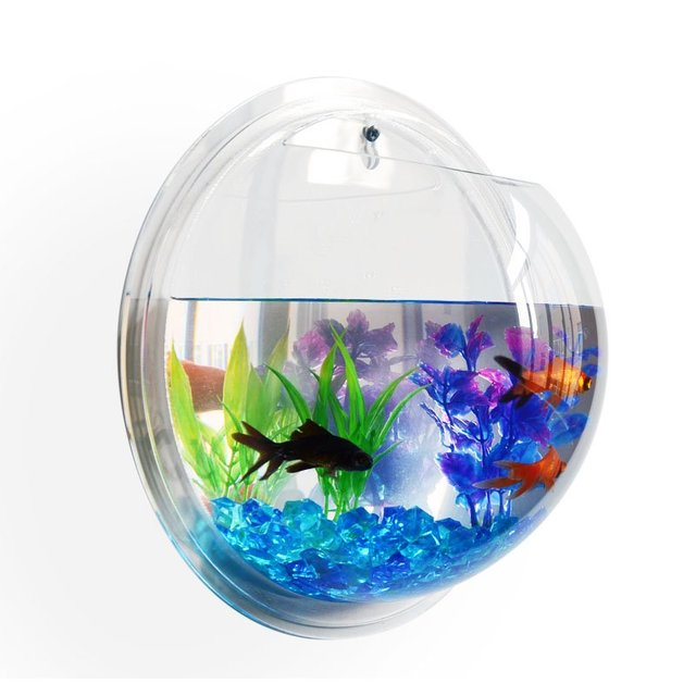 New transparent acrylic wall plants hanging wall aquarium for Acrylic fish bowl
