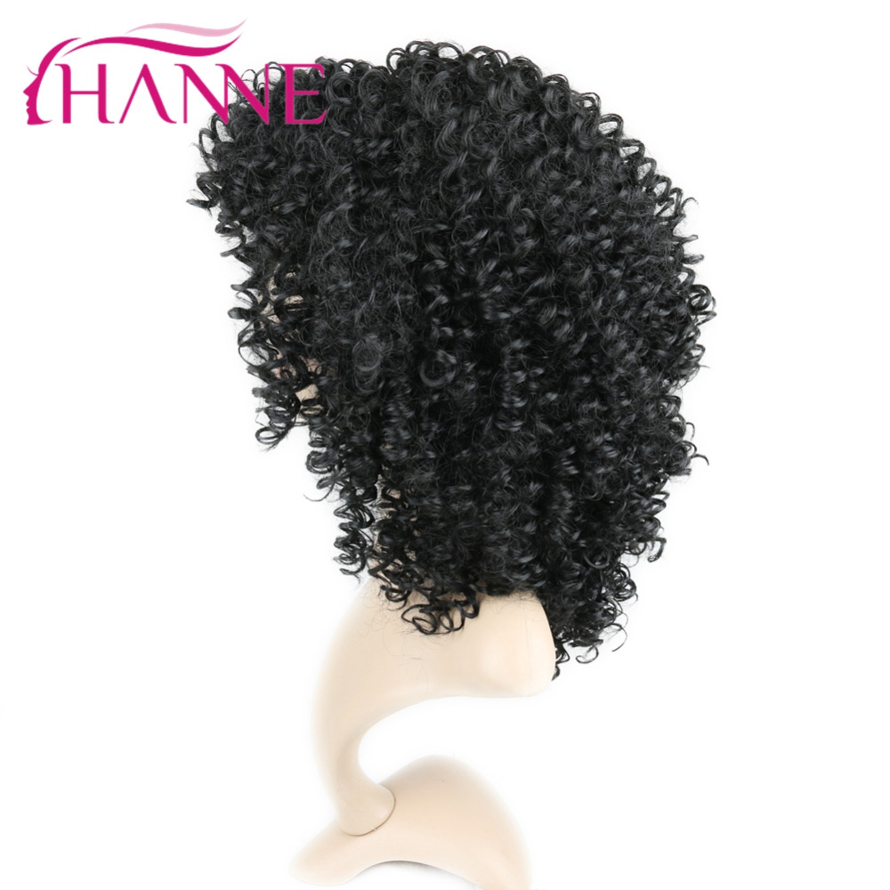 afro curly wig05