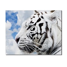 Laeacco Single Panel Modern Tiger Animal Posters Prints Wall Artwork Picture Canvas Painting for Living Room Home Decor