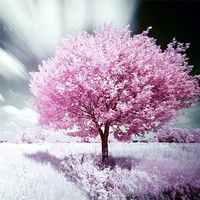 Full Square Drill Needlework Diy 3d Cross Stitch Diamond Painting Pink Flower Tree Pictures Of Rhinestone