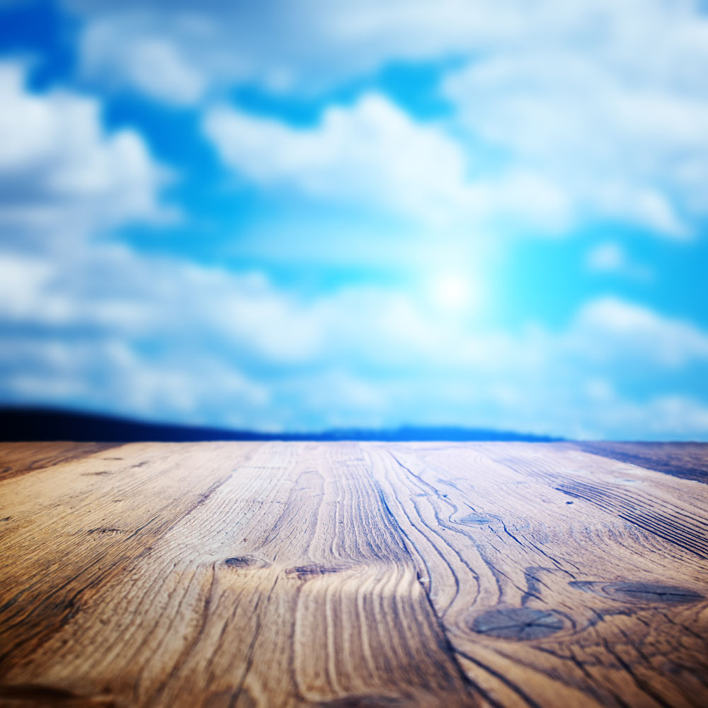 SHANNY 10x10ft  Vinyl Custom Wood grain Photography Backdrops Prop Studio Background TMW-20146 10x10ft vinyl custom wood grain photography backdrops prop studio background tmw 20191
