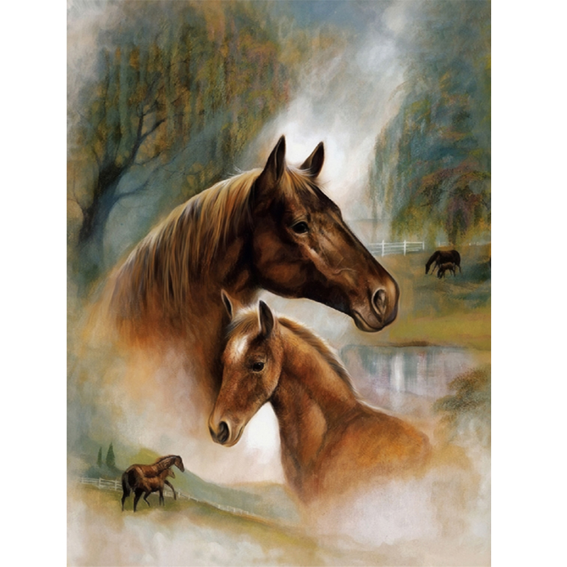 5d diy diamant peinture point de croix Diamant broderie animal deux cheval animaux diamant rond mosaïque motif décor à la maison