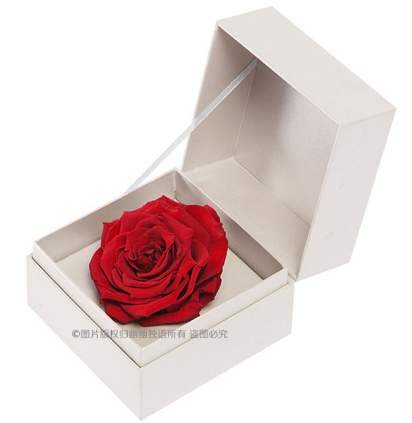 Sale Color Preserved Fresh Rose Flower High End Gift Box For