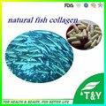 Suplemento de la nutrición proteína de colágeno de pescado cápsulas 500 mg * 1000 unids/lot envío libre