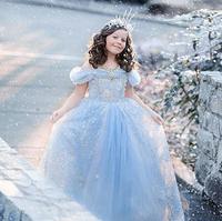 2017 Top Kwaliteit Meisje Jurken Assepoester Jurk Kostuum Prinses Feestjurken Sneeuw Koningin Kerst Peuter Meisjes Kleding