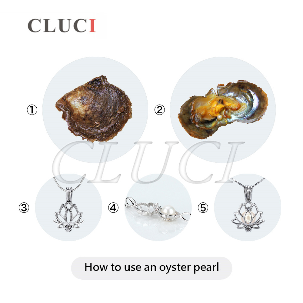 CLUCI 30pcs Akoya Pearl in Oysters for Women Jewelry Making  Quality 6-7 mm Natural Pearl Saltwater Oysters with Pearl