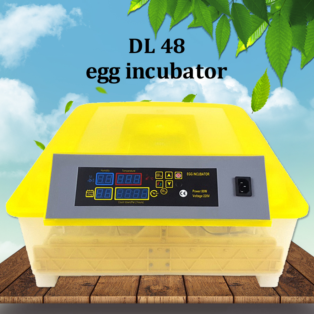 Mini 48 Chicken Egg Incubator Hatcher Hot Sale Automatic Egg Incubator Hatching Machine for Duck Parrot DL 48