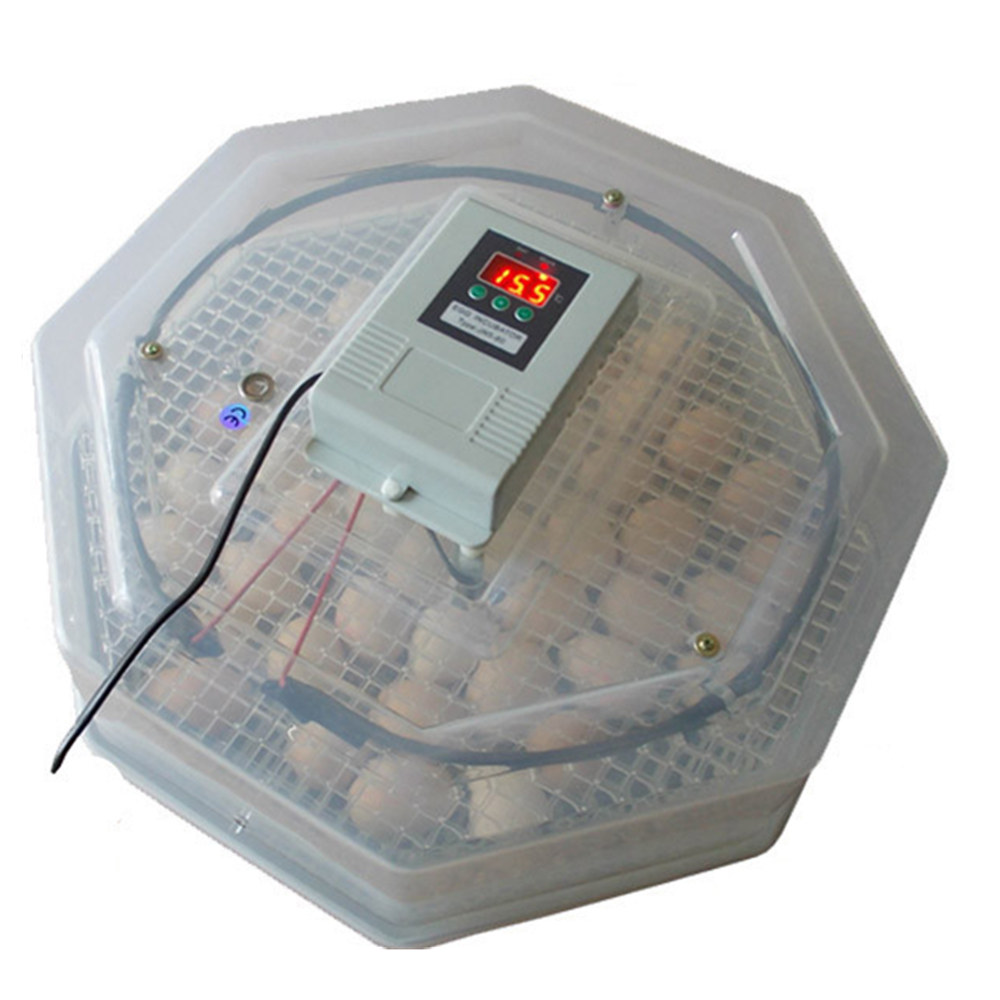 Egg Incubator Automatic Hatching Machine Electric Mini Home Use Chicken Duck Eggs Hatcher