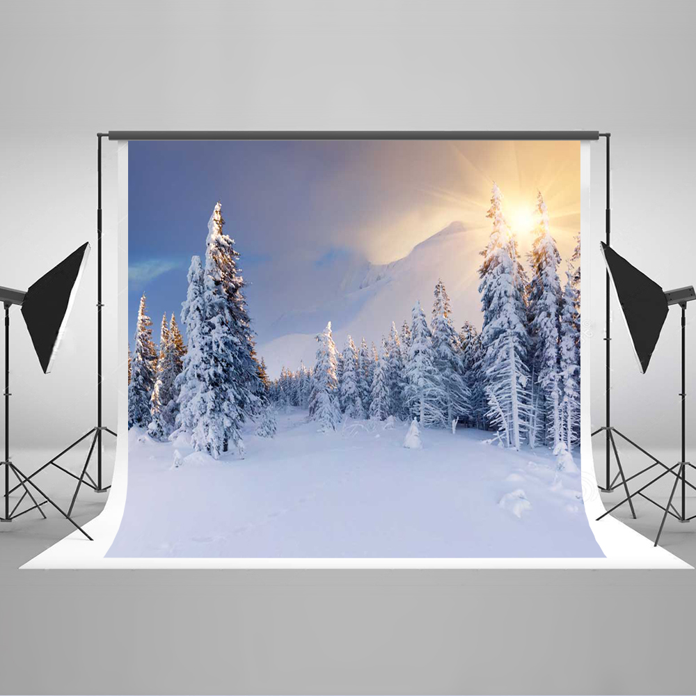 Kate Snowy Photography Backgrounds Winter Forzen Backgrounds For Photo Studio Cotton Washable Photo Studio Background kate photo background scenery
