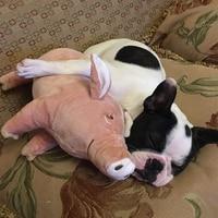 GANYUE Pet Dog four feet Pink Pig Sleeping Partner Toy French Bulldog Teddy Tooth biting Vent Toy Dog doll Pig Plush Pillow Toys
