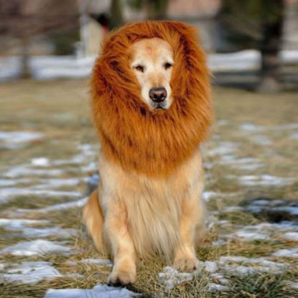 Pet Costume Dog Lion Wigs Mane Hair Festival Party Fancy Dress up Halloween Costume pet lion hair pet hair Brown S