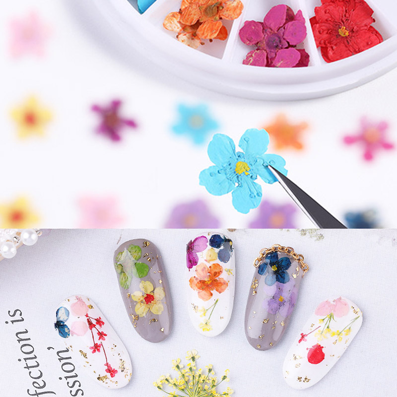 2019 Hot sale 1 Set Nail Art Tips Decoration Small Dried Flower DIY Manicure Accessories for Women in Stickers Decals from Beauty Health