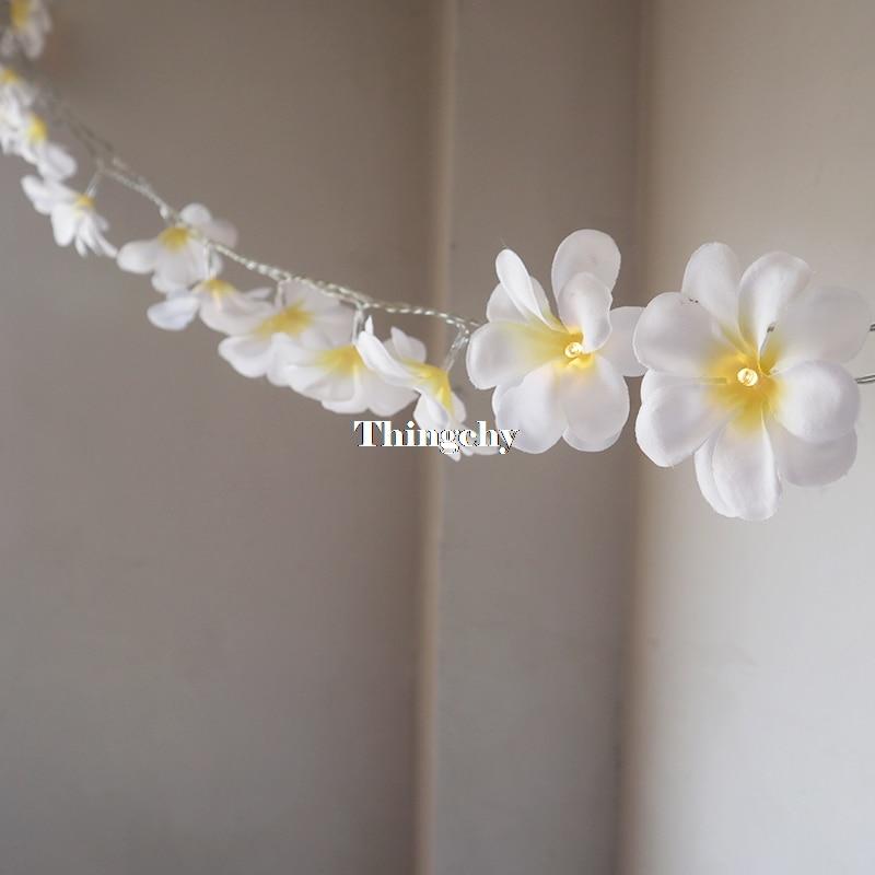 Creative DIY frangipani LED String Lights Batteri blomsterferie - Ferie belysning - Foto 4