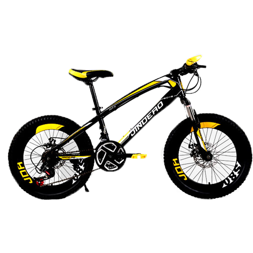 20inch 21 Speed Fat Bike Mountain Bike Bicycle Child High
