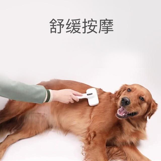 Slicker Brush for Dogs  4