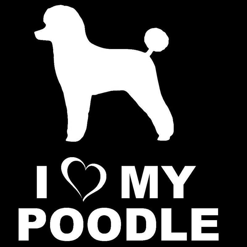 Funny BLACK POODLE Dog Vinyl Car Van Decal Sticker Pet Animal Lover