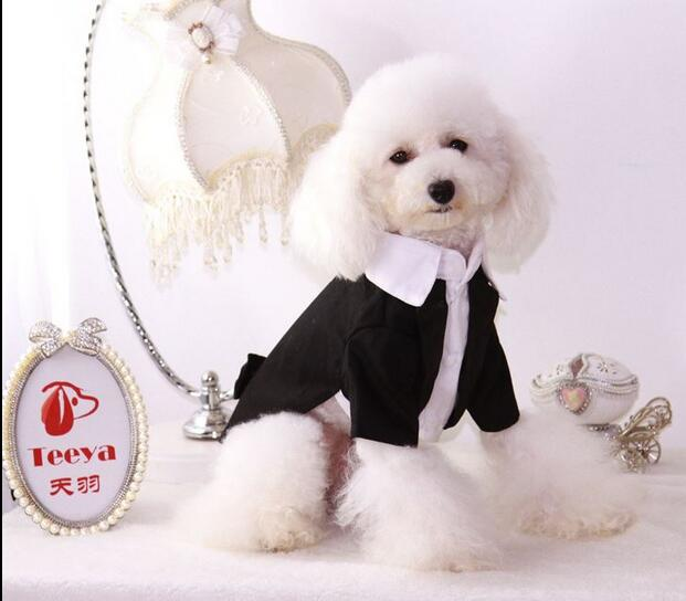 New Pet Dog Cat The Bride and Groom Clothes Gentleman Suit Tuxedo Bow Tie Costume Jumpsuit Shirt White Wedding Dress