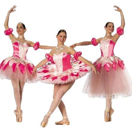 Child Costume Female Child Ballet Dance Dress Latin Dance Clothe Professional Ballet Tutu Ballet Dress For