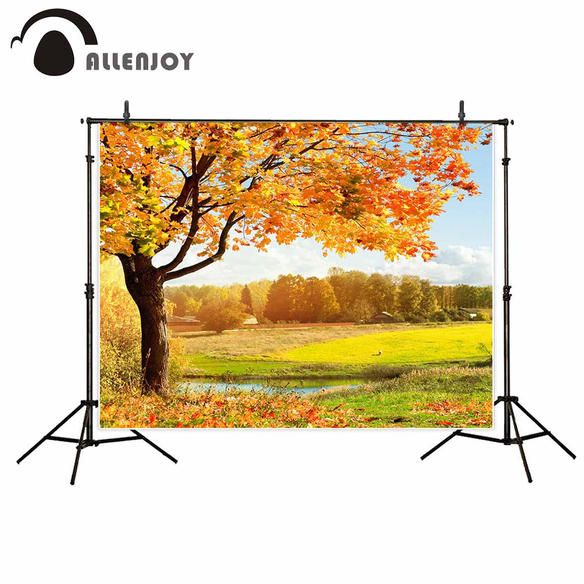 Allenjoy photographic background Autumn leaves Wonderland beautiful natural Photographic for study Photo