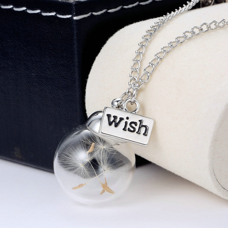Glass bottle dandelion clover real flower pendant long silver chain glass bottle dandelion clover real flower pendant long silver chain necklace lucky wish locket jewelry for women friend in chain necklaces from jewelry mozeypictures Gallery