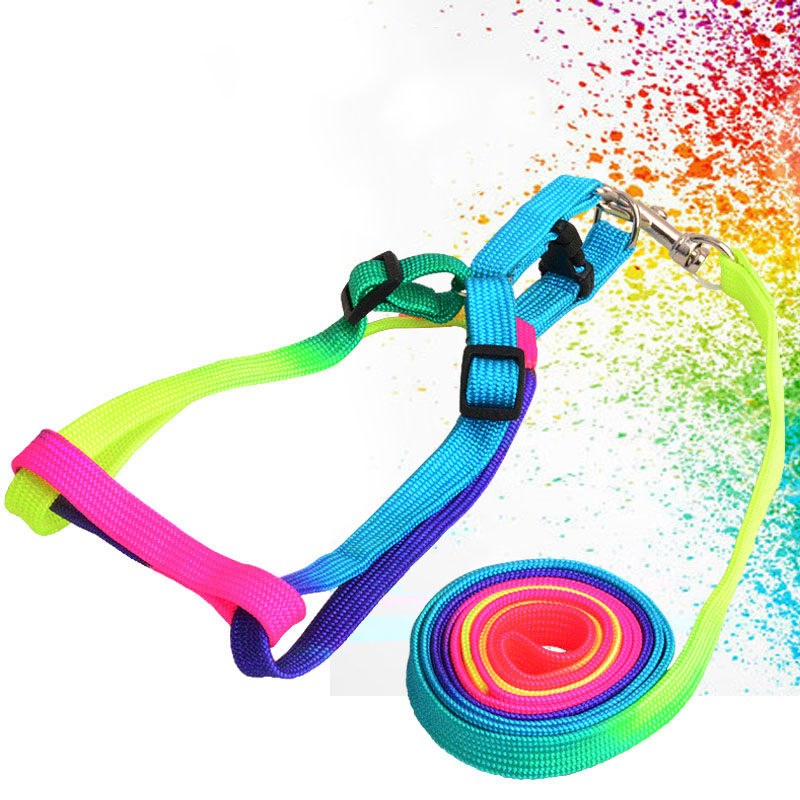 Colorful Rainbow Pet Dog Collar Harness Leash Soft Walking 1