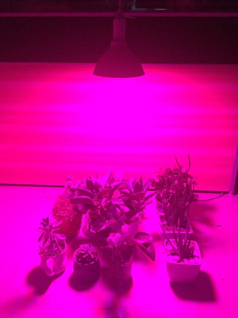 500 Led Grow Light крушка за цветя растение - Професионално осветление - Снимка 6