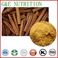 Chinese Cinnamon Extract Powder,  Chinese Cinnamon Powder, Cinnamon Bark Extract 800g