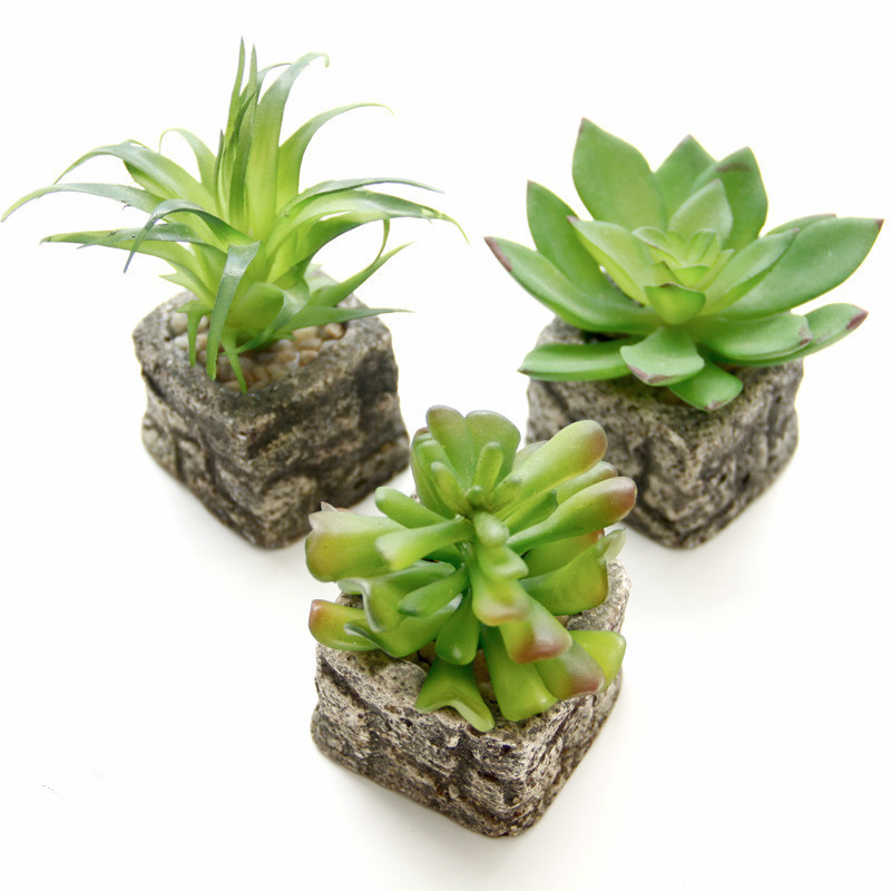 Detail Feedback Questions About Small Potted Bonsai Mini Artificial Succulent Plants Set Fake Flower Vase Imitation Stone Home Decor 12 Style On