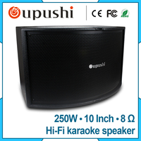 250W Conference Audio And Karaoke Pro Audio King Karaoke