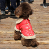 Pet Dog Clothes Ling Plaid Splicing Retro Leather Clothing Winter Leather Dog Coats Snow Fur Jacket