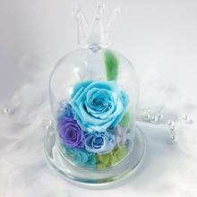 Wedding Home Birthday Party Car Decoration Beautiful Glass Cover Fresh Preserved Rose Flowers