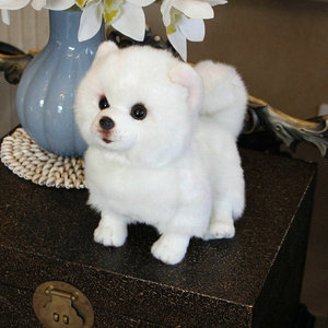 Image 1 - Peluche Pomerania cane bambola cane di Simulazione giocattoli animali di peluche super Realistico giocattolo del cane per gli amanti degli animali di lusso della decorazione della casa da neve bianco