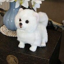 קטיפה Pomeranian כלב בובת סימולציה כלב ממולא בעלי החיים צעצועי סופר מציאותי כלב מחמד אוהבי יוקרה בית תפאורה שלג לבן