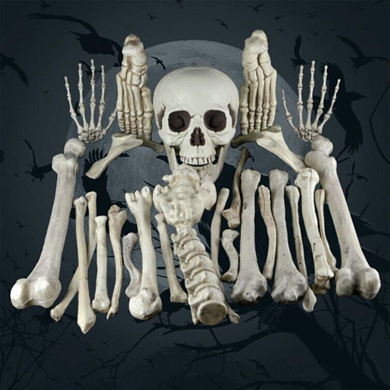 Halloween Decoration Bone Props Animals Skeleton Ornaments Bat Spider Dragon Bird Bones Hallowmas Horror House Party Decoration (65)