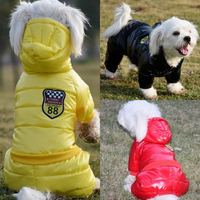 Puffy and bright Waterproof Dog Coat