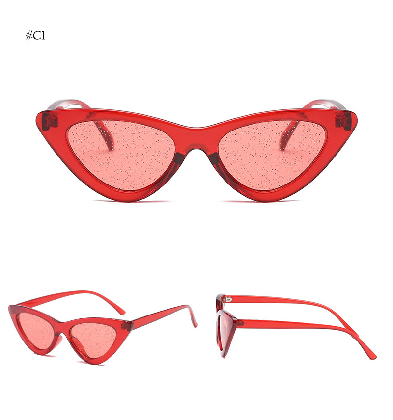 cat eye sunglasses (11)
