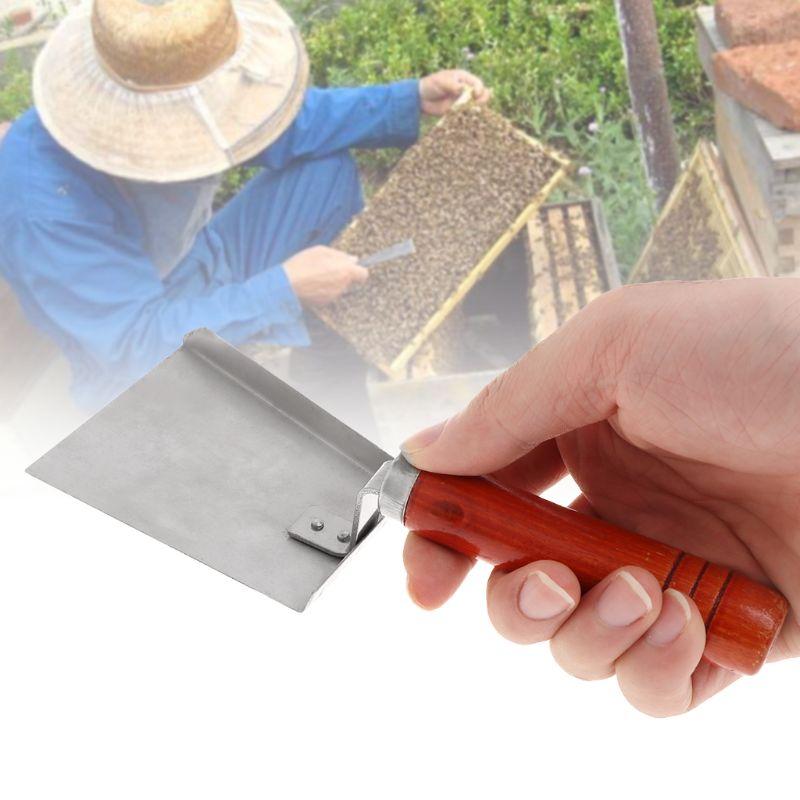 Image 2 - Beekeeping Cleaning Shovel Stainless Steel Wood Handle Bee Case Cleaner Tools Hive Beekeeper Equipment-in Beekeeping Tools from Home & Garden