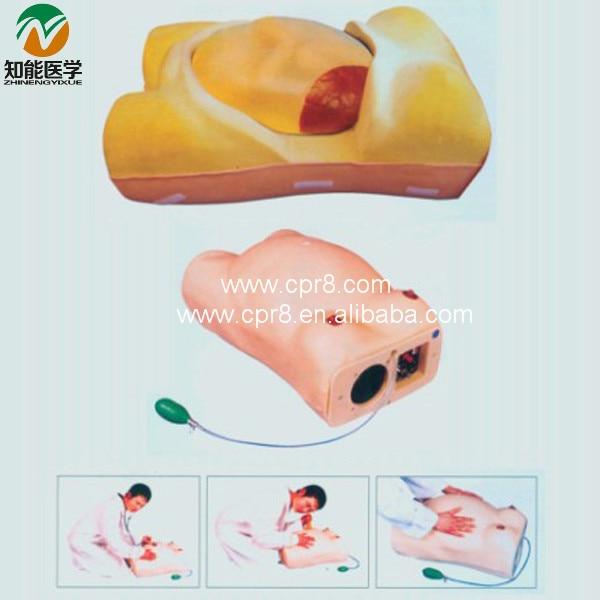 BIX-FW2 Advanced Electronic Pregnant Women Examination Manikin   MQ178BIX-FW2 Advanced Electronic Pregnant Women Examination Manikin   MQ178