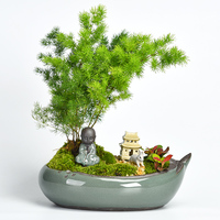 Creative office home green plants pot ceramic bonsai flower pot wholesale Personality succulent pots clearance