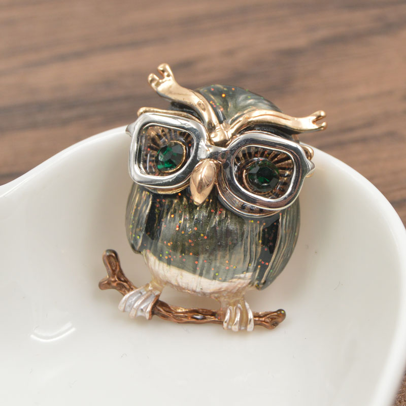 CINKILE Cute Green Eyes Owl Brooch Wear Glasses Fashion Enamel Pin Animal Brooch Good Gift for Kids and Women New Year 39 s in Brooches from Jewelry amp Accessories