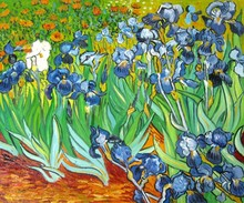 Irises by Vincent Van Gogh Handpainted