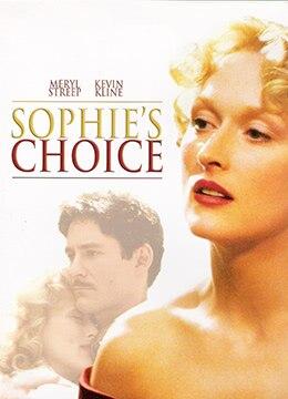 《苏菲的抉择》1982年英国,美国剧情,爱情电影在线观看