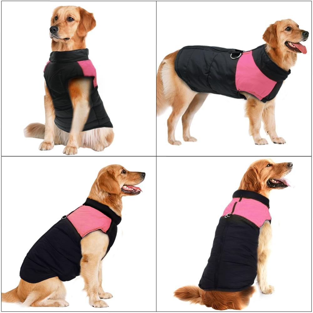 Köpek yağmurluk hep21.com