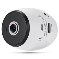 Wifi 4G Intelligent Panoramic Network App Smart Camera Baby Monitor 2 Way Audio With Motion Detection