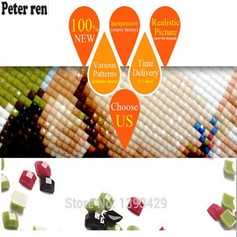 Питер рен Ди алмас кескіндеме - Өнер, қолөнер және тігін - фото 2