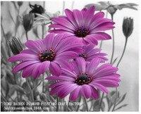 Lilac Gänseblümchen Blumen diamant malerei kit 30x20 cm quadrat bohrer diamantrhinestone klebte malerei unfinish raumdekoration