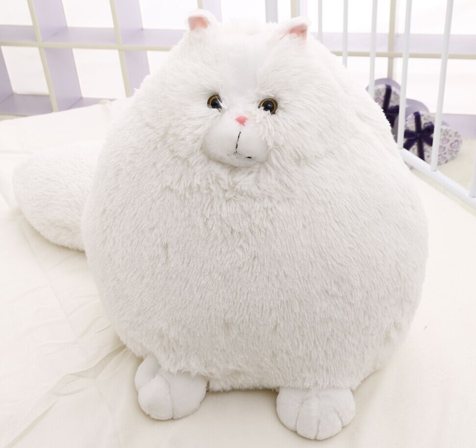 Free Shipping 50cm Big size Persian Cat Plush Toy Persian Cat Soft Stuffed Doll Plush Gift White Cat Doll NEW large 24x24 cm simulation white cat with yellow head cat model lifelike big head squatting cat model decoration t187
