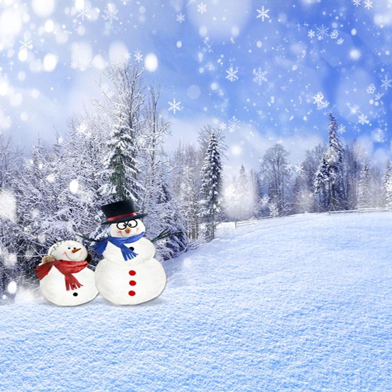 10x10ft Snowman Snow Flakes Photography Backdrops Computer Printing Christmas Background For Children Photo Studio корм tetra tetramin xl flakes complete food for larger tropical fish крупные хлопья для больших тропических рыб 10л 769946