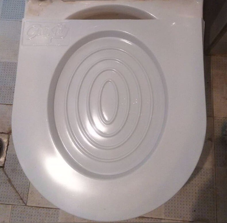 EASY TO LEARN CAT TOILET TRAINING KIT 5