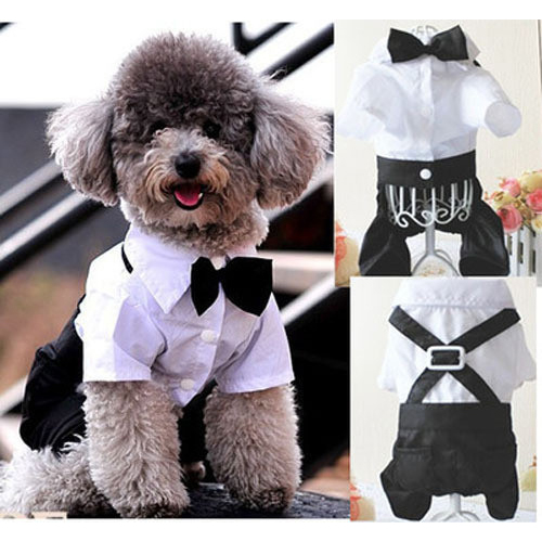 Pet Dogs Cat Clothing Prince Tuxedo Bow Tie Suit Puppy Costume Jumpsuit Coat Clothes Apparels